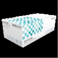 Nitrile Disposable Gloves - Powder Free, 200/box XL